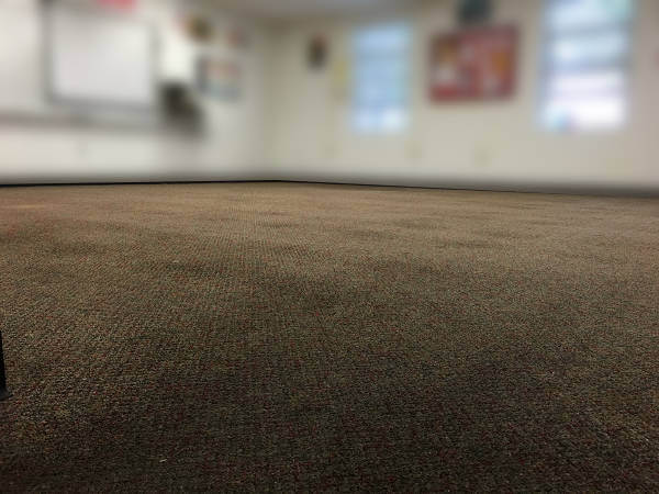 dirty carpet before image 2-17-17
