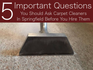 5 Questions You Should Ask Your Carpet Cleaners In Springfield, MO